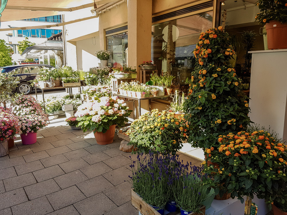 Blumen Haas Starnberg