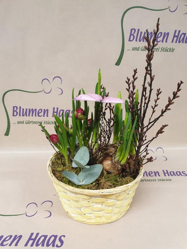 Nr.82 Frühlingskorb mit Schmetterling 17,50€